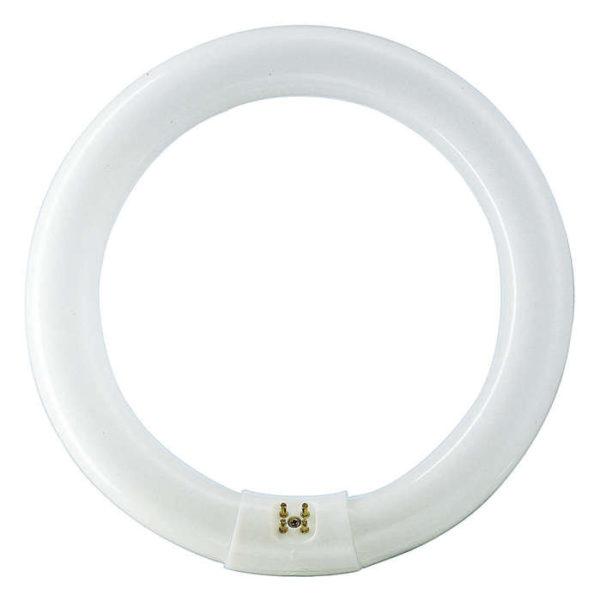 t9 circular image